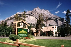 pet friendly hotel in banff