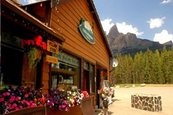 pet friendly chalet in banff