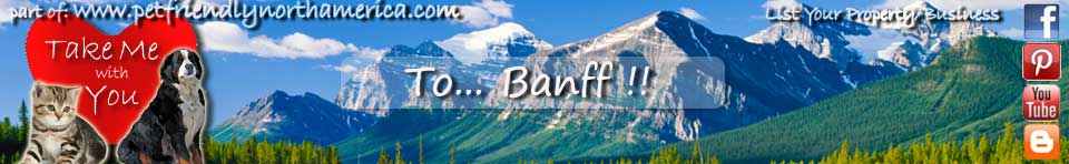 pet friendly banff